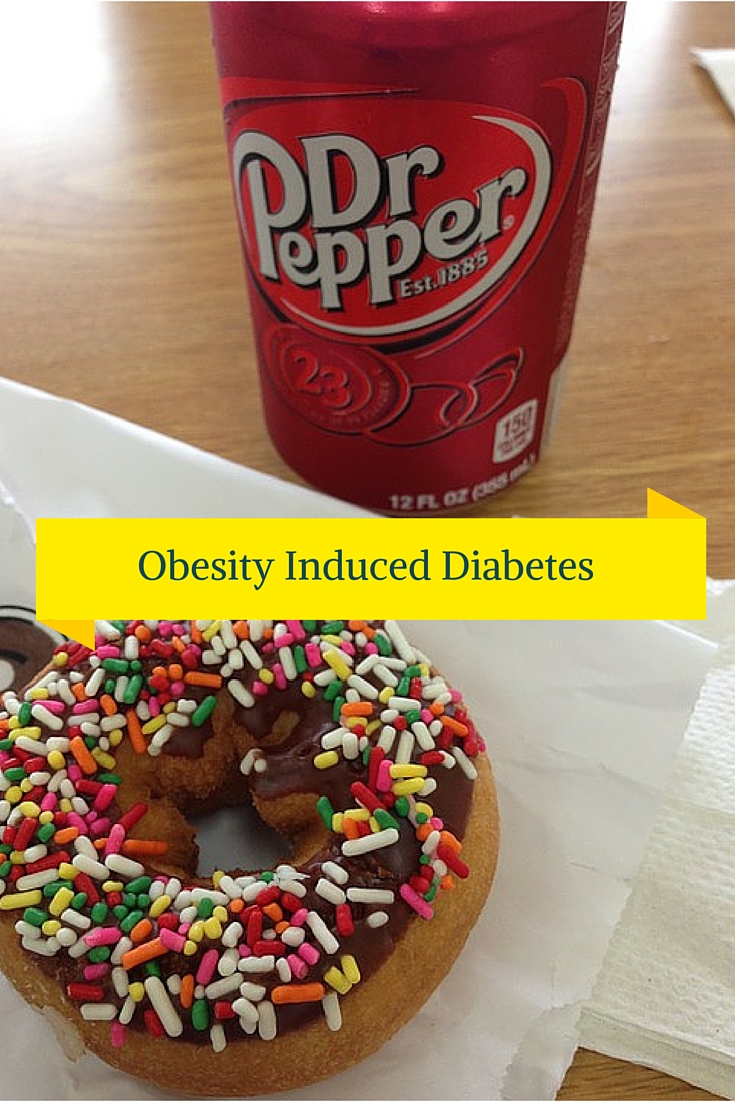 Obesity Induced Diabetes