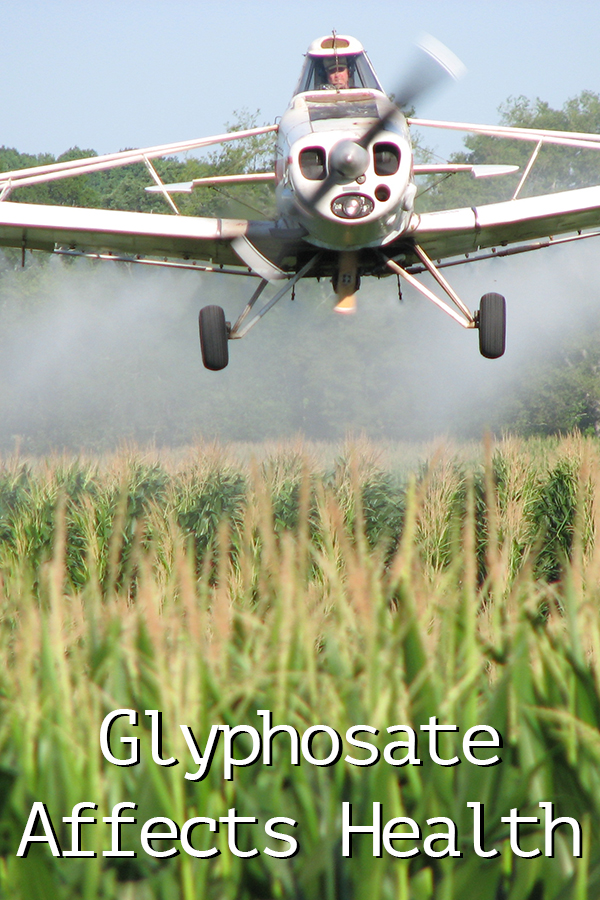 Glyphosate Affects Health