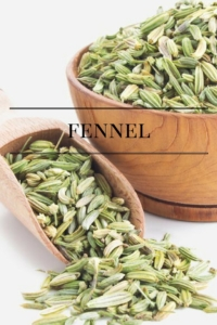 Fennel for Healthier Cell Membranes
