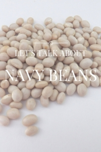 Let's Talk about Navy Beans